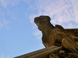 A gargoyle of Saint Marys Church